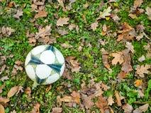 Piłka na trawie Obrazy Stock