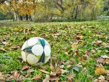Piłka na trawie Zdjęcie Royalty Free