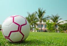 Piłka na trawie Zdjęcia Stock