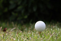piłka w golfa Zdjęcia Stock