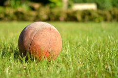 Piłka w ogródzie Obrazy Royalty Free