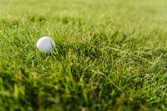 piłki golfowy trawy zieleni biel Zdjęcia Royalty Free