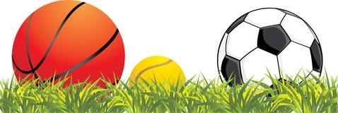 piłki grass target823_0_ Obrazy Royalty Free
