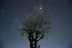 Piękna astrofotografia zdjęcia royalty free