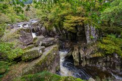 Piękna Braklynn siklawa w Szkocja Zdjęcie Stock