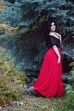 Piękna czarownica w lasowym Halloween Fotografia Stock