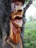 Piękna drewno sztuka Fotografia Stock