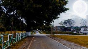 Piękna droga IG park Zdjęcie Royalty Free