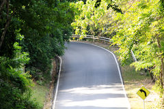 Piękna droga w lesie obrazy royalty free