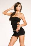 piękna dziewczyna brunetki Obraz Royalty Free