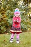 Piękna dziewczyna z brown kasztanem w autmn parku Obraz Stock