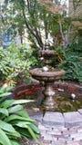 Piękna fontanna z drzewami w tle obraz royalty free