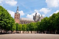 Piękna gotyka stylu katedra w melinie Bosch, holandie Fotografia Royalty Free
