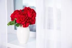 Piękna hortensja kwitnie w wazie na nadokiennym parapecie Obrazy Stock