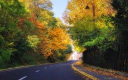 Piękna jesieni droga Obraz Royalty Free