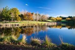 Piękna jesieni scena fotografia royalty free