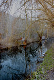 Piękna Jihlava rzeka Obraz Royalty Free