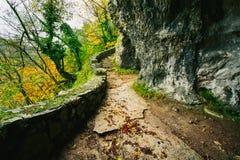 Piękna kamienna droga przemian w lasowym Plitivce, Chorwacja Zdjęcia Stock
