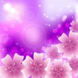Piękna karta z kwiecistym ornamentem Zdjęcie Stock