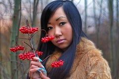 piękna kobieta Zdjęcia Stock