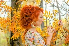 piękna kobieta Zdjęcie Royalty Free