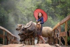 piękna kobieta azjatykcia Zdjęcia Royalty Free