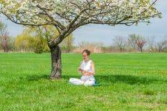 Pi?kna kobieta siedzi w Lotosowej pozy okwitni?cia pobliskim drzewie ?wiczy joga zdjęcia royalty free