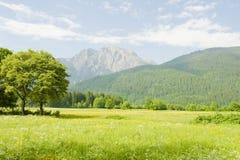 piękna krajobrazowa góra Zdjęcie Royalty Free