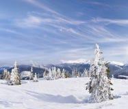 piękna krajobrazowa zima Zdjęcie Royalty Free