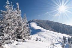piękna krajobrazowa zima Obrazy Royalty Free