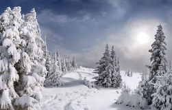 piękna krajobrazowa zima Zdjęcia Royalty Free