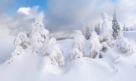 piękna krajobrazowa zima Fotografia Stock