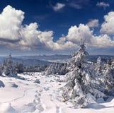 piękna krajobrazowa zima Zdjęcie Stock