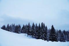 piękna lasu krajobrazu zima Góra w dymny Karpackim, Obrazy Stock