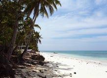 Piękna linia brzegowa, turkusowy widok morze z drzewkami palmowymi, Obrazy Royalty Free