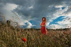 Piękna lotnicza kobieta w zielonym polu przy zmierzchem Fotografia Stock