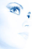 piękna makeup obraz royalty free