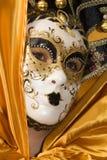 piękna maska Obrazy Stock