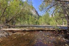 Piękna merced rzeka w Yosemite parku narodowym Zdjęcie Stock