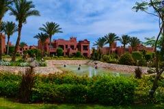 Piękna natura, krajobraz, Czerwony morze, Egipt Obrazy Royalty Free