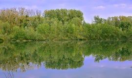 Piękna natura - musimy save je Zdjęcie Stock