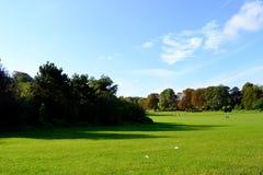Piękna natura w parc Fotografia Stock