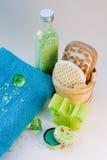 piękna naturalny produktów skincare Zdjęcie Royalty Free