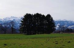 piękna okolica krajobrazu Zdjęcie Royalty Free