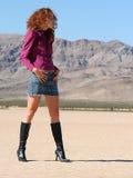 piękna pustynia Obrazy Royalty Free