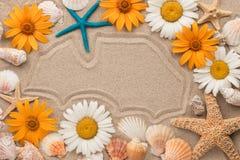 Piękna rama kwiaty, gwiazdy i skorupa na piasku, Fotografia Stock
