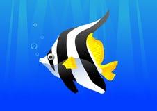 piękna ryba Zdjęcia Royalty Free