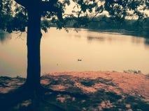 piękna rzeka obrazy royalty free