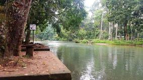 Piękna rzeka w Honduras Zdjęcia Stock