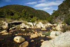 Piękna rzeka w jesieni Fotografia Royalty Free